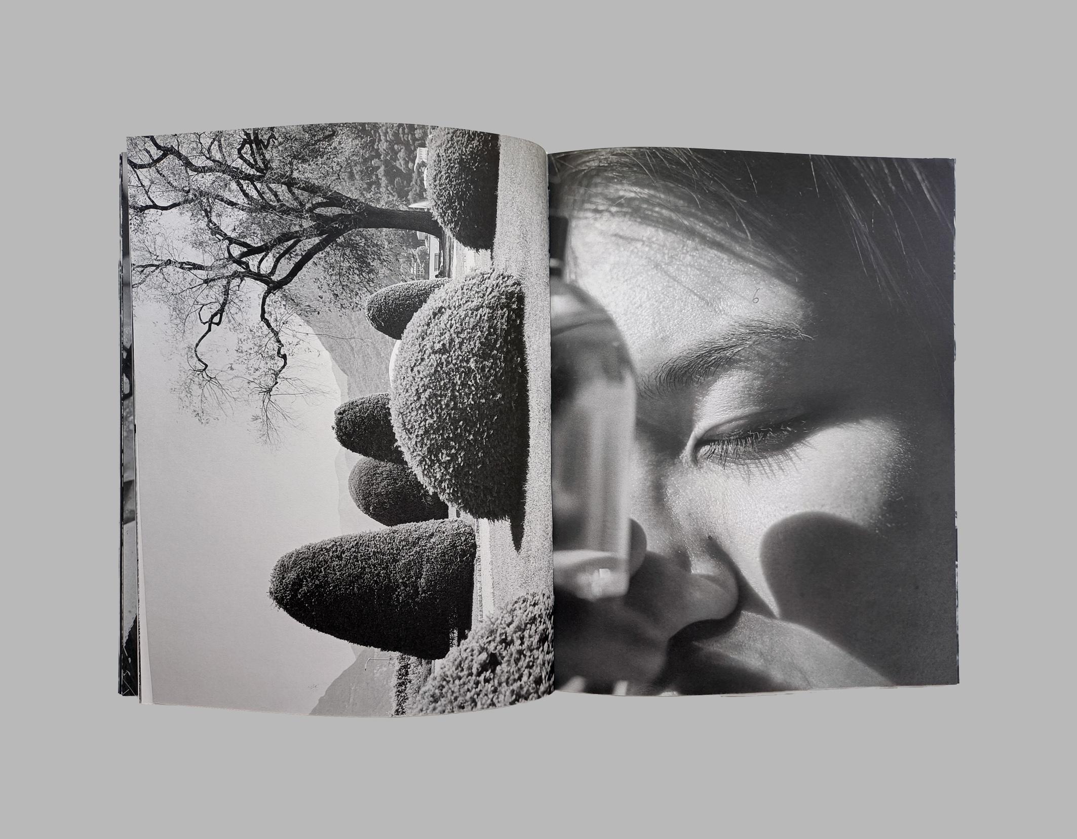 Mattia Parodi & Piergiorgio Sorgetti: The Missing Eye
